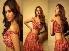 New pictures of Heroine Nabha Natesh